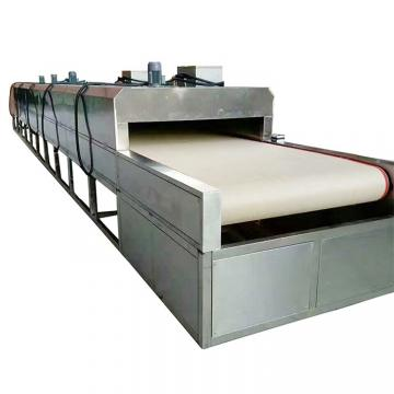 Dw Series Food and Vegetable Continous Conveyor Belt Dryer