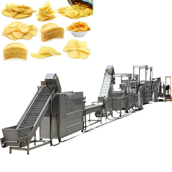 French Fries Making Machine Fully Automatic/Stainless Steel French Fries Cutters 100kg H Potato Chips Strip Cutting Machine for Frozen Maker in India #1 image